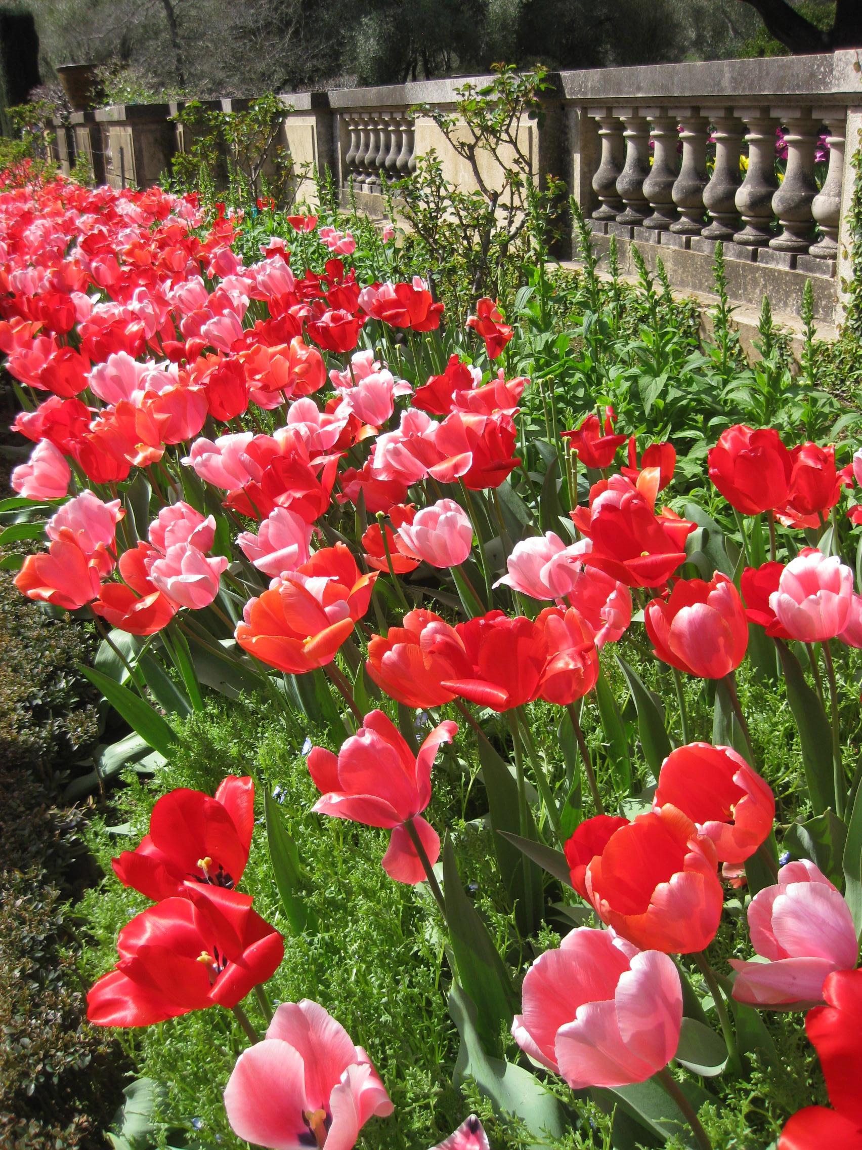 Be inspired by Filoli Gardens in California